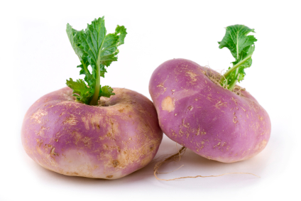 Turnips, Root Beer and Evolution